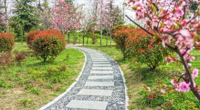 Gepflasterter Weg durch einen Garten