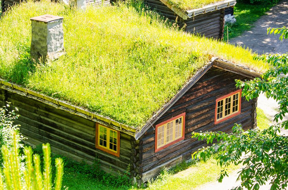 ökologischer Garten - dachbegrünung