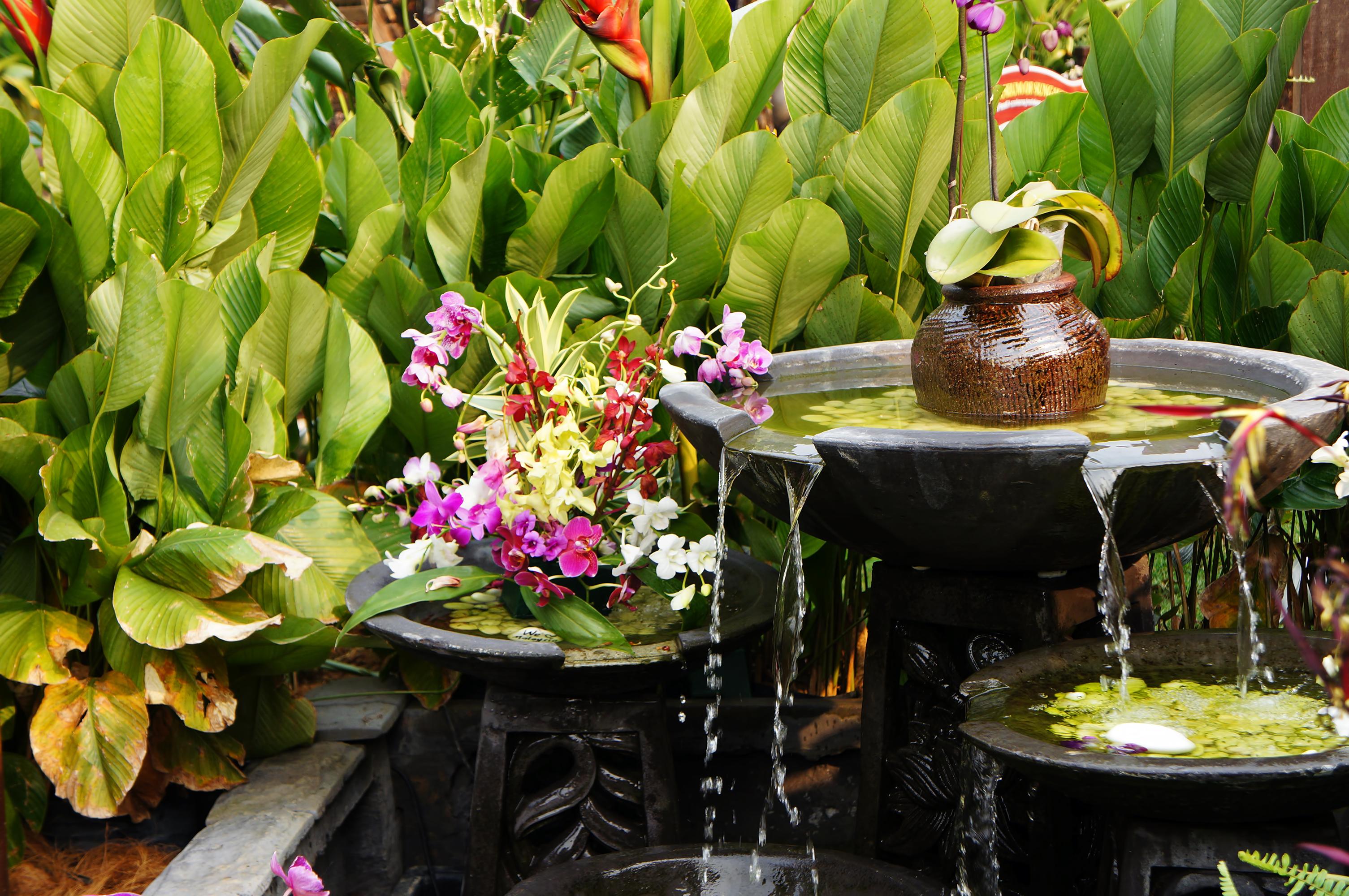 Feng-Shui Garten – das gilt es bei der Gestaltung zu beachten!