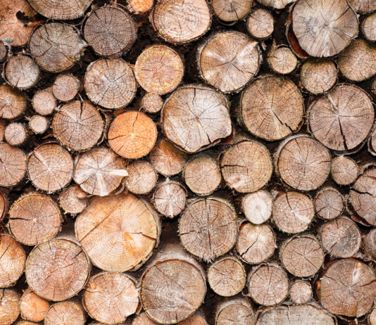 Unterstand für Brennholz