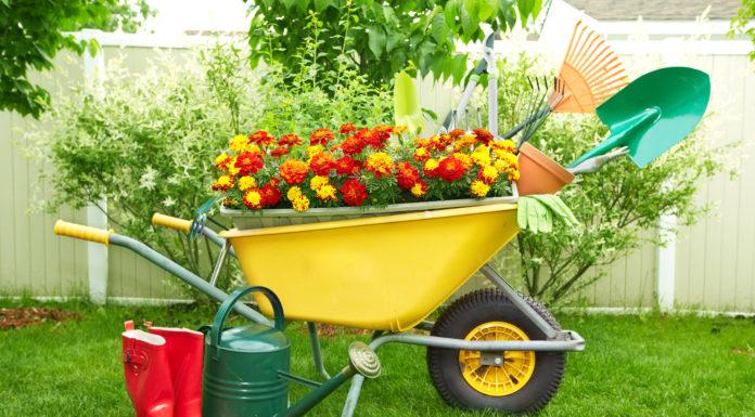 Upcycling einer Schubkarre als Blumenbeet