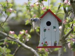 Vogelhaus freihängend im Garten