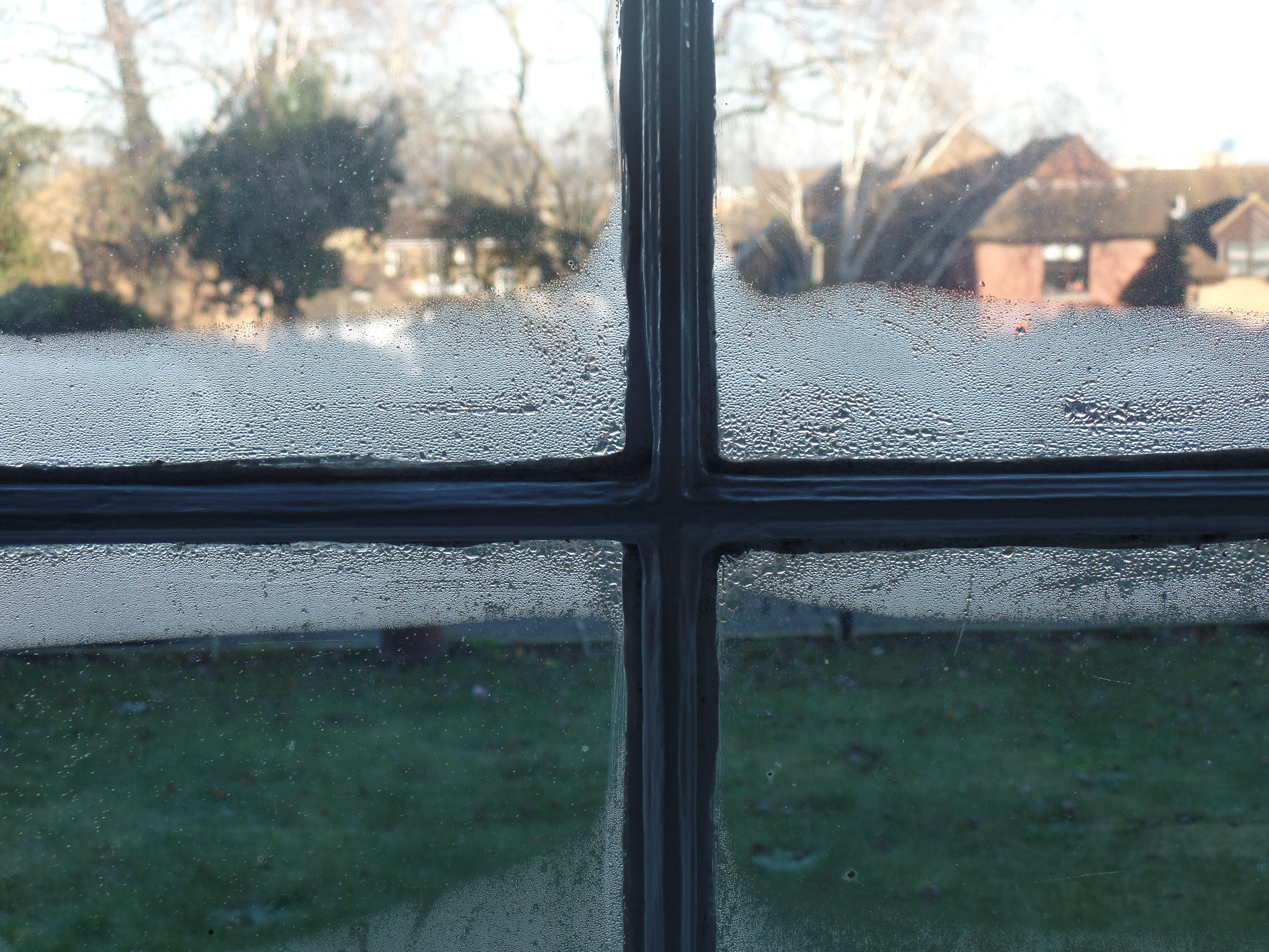 Feuchtigkeit am Fenster eines Gartenhauses