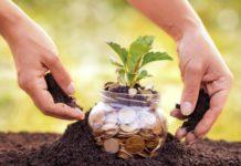 5 Möglichkeiten zum Steuern sparen im Garten