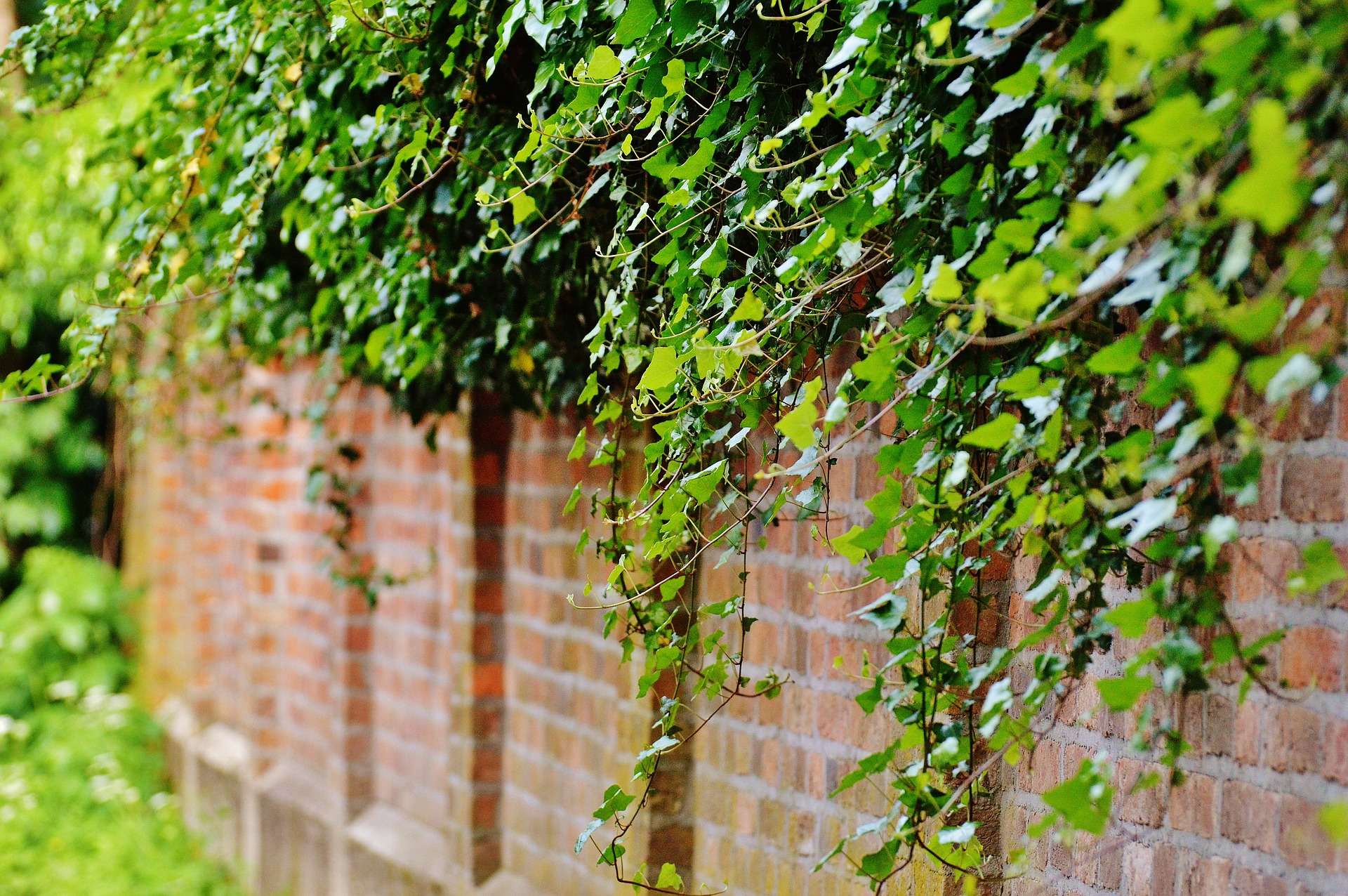 hanggarten variantenreicher garten mit gestaltungsspielraum