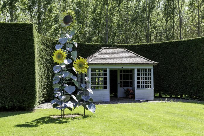 Grüner Garten mit Gartenhaus und Hecke.