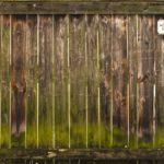 Grünspan auf Holz