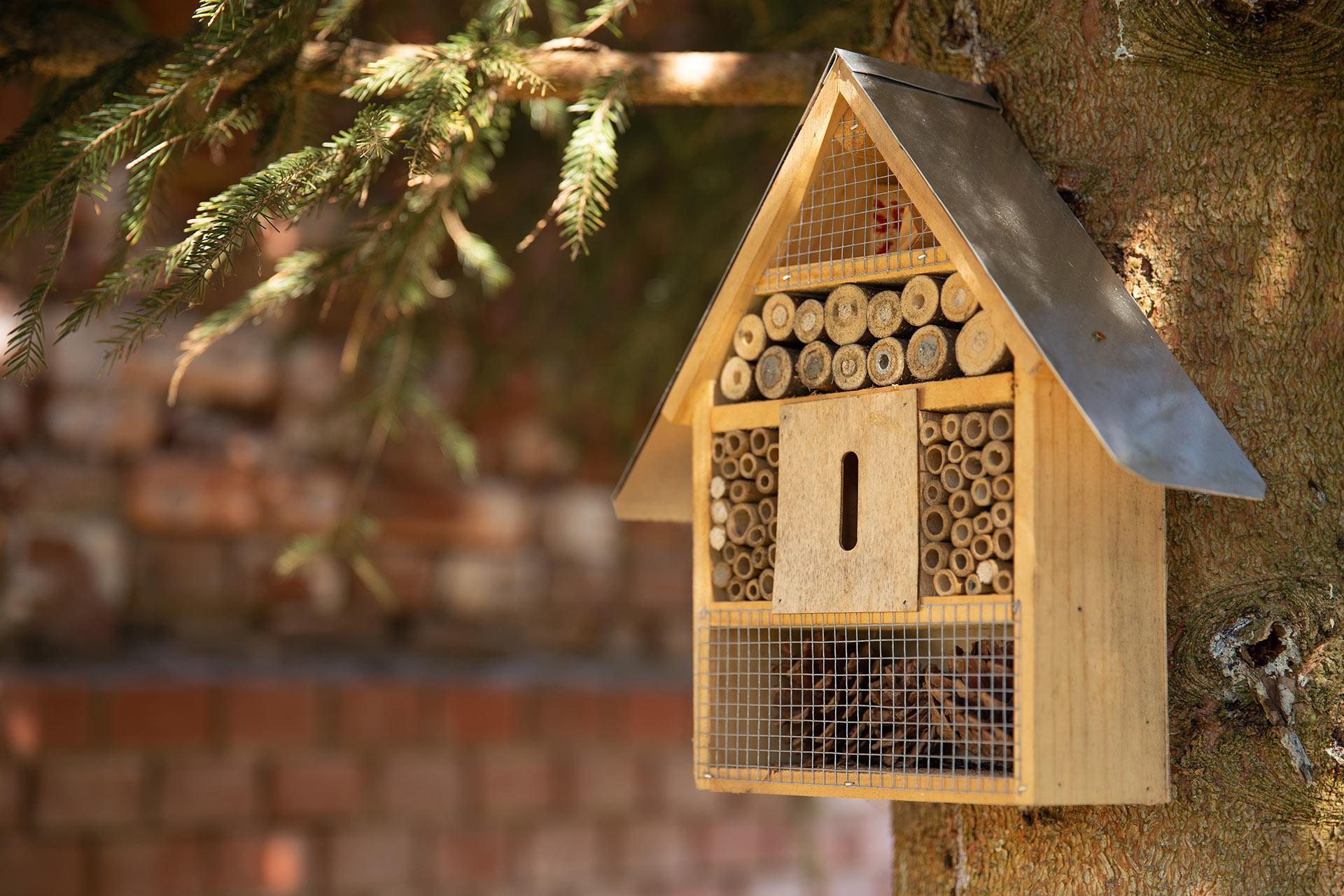 Insektenhotel selber bauen   Tipps, Tricks + Gratis Bauanleitung [PDF]