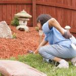 Rückenschmerzen Garten