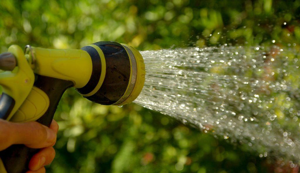 Wasserschauch-Wassertropfen