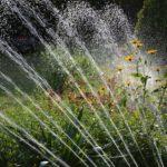 garten-bewässerung-sprinkler