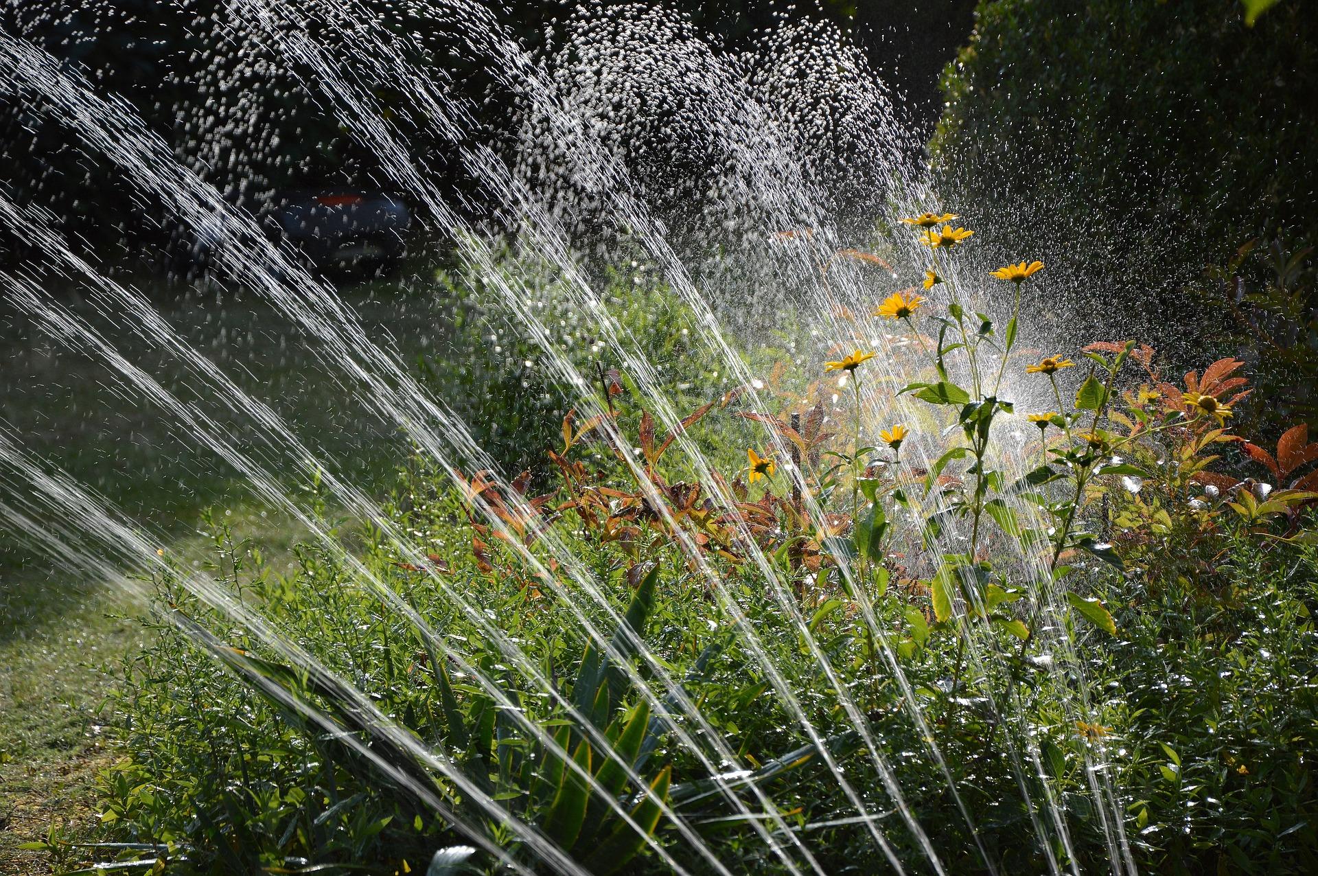 gartensprinkler-Garten-Blumen
