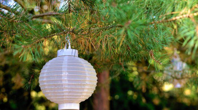 lampion-garten-beleuchten-ohne strom