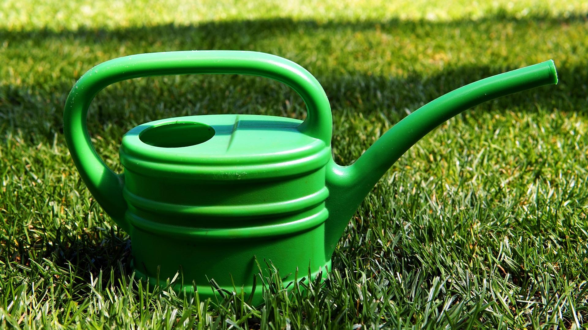 Wann Und Wie Sie Den Rasen Bewässern Sollten So Muss Das