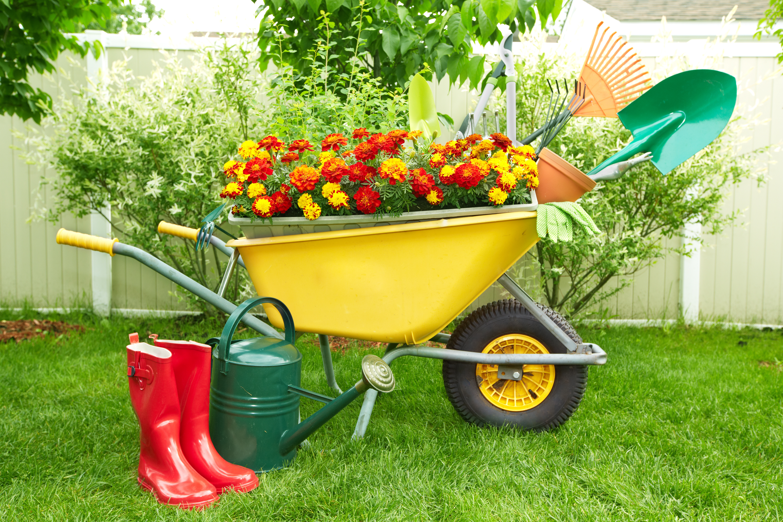 Upcycling: Kreative Ideen für den Garten - So muss das!