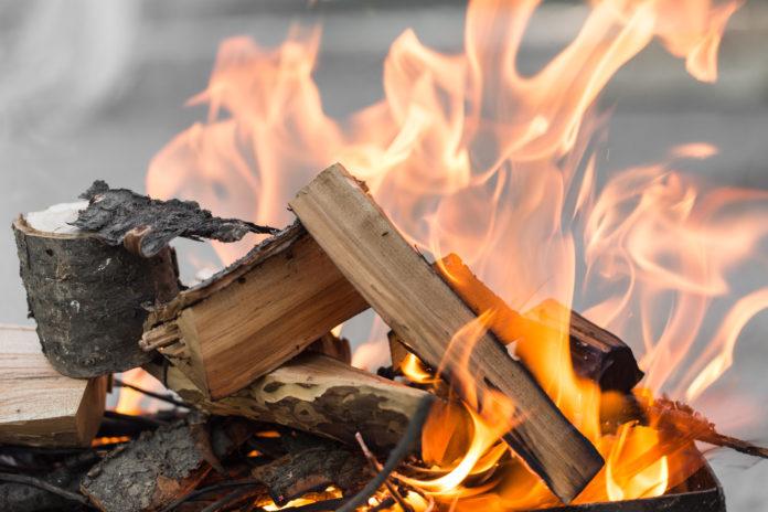 Brennholz welches brennt