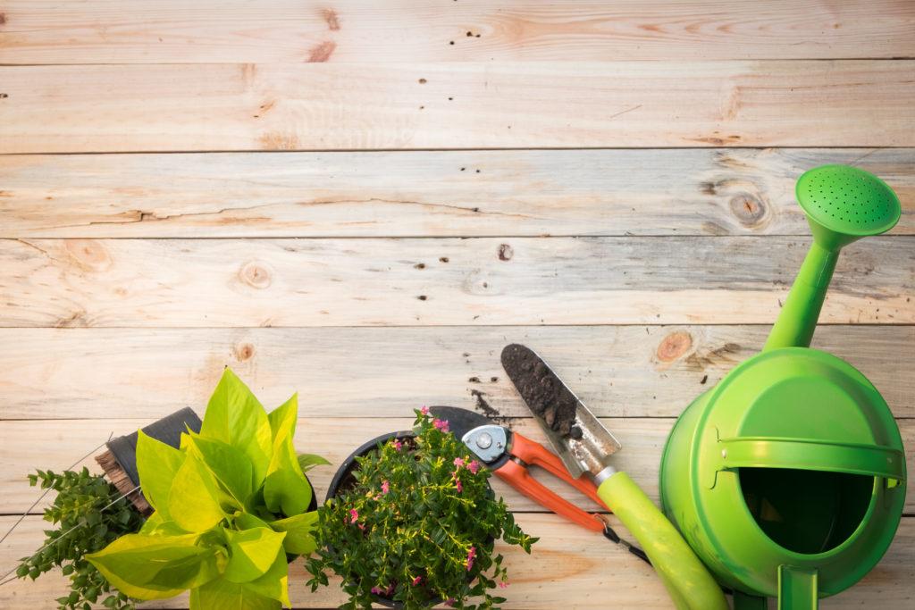 Tag der Gartenarbeit