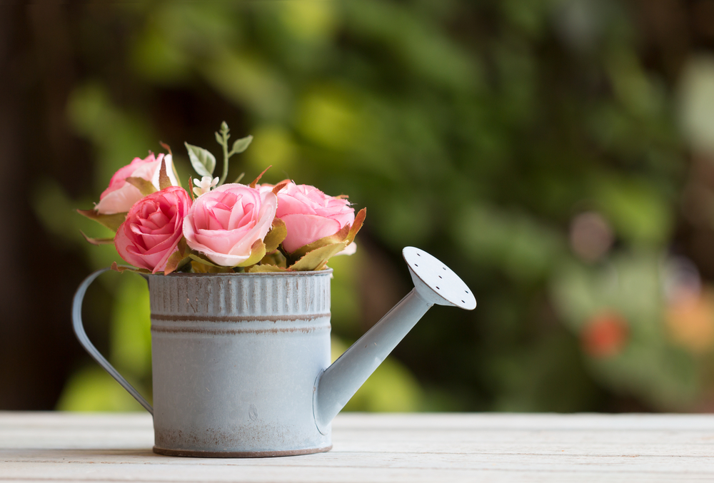 Upcycling Gießkanne als Blumentopf