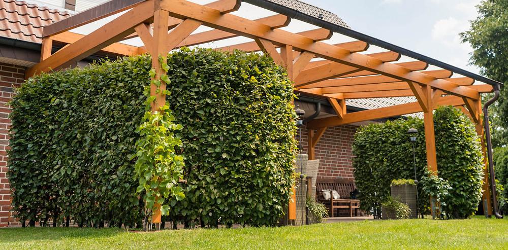Terrassenüberdachungen aus Nadelholz